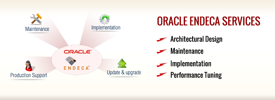 Oracle Endeca Services